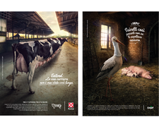 TBWA\Italia is Cargill's new agency and takes care of its institutional communication and BtoB